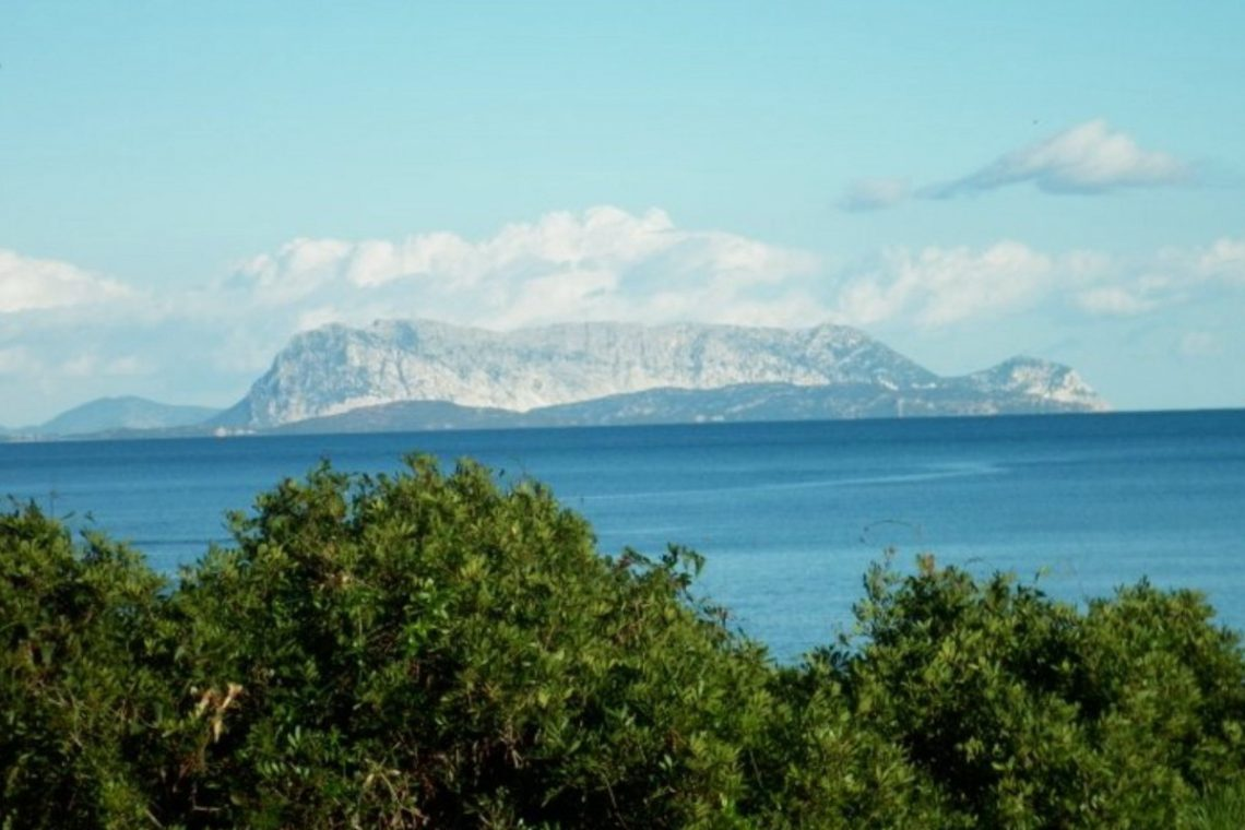 Waterfront house Sardinia sale 13