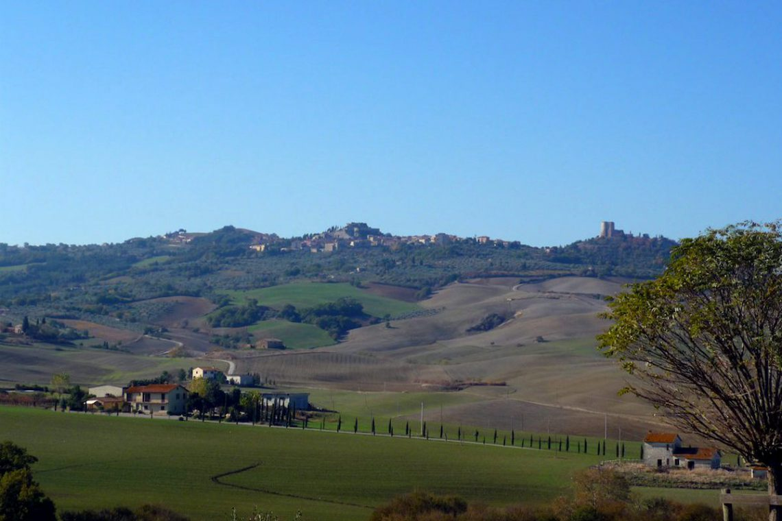 Tuscany farmhouse for sale near Montalcino 14