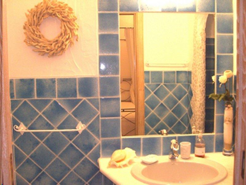 Villa Porto Cervo rent 23