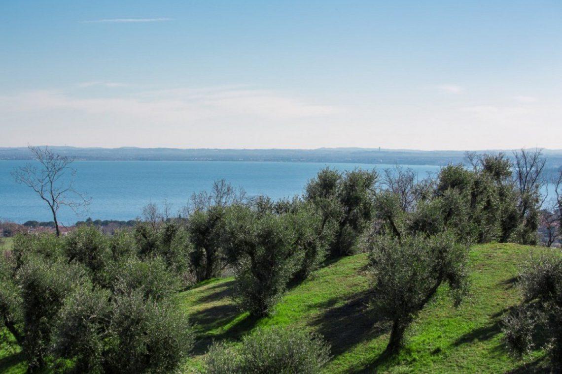 House Lake Garda in luxury condo with lake view 27