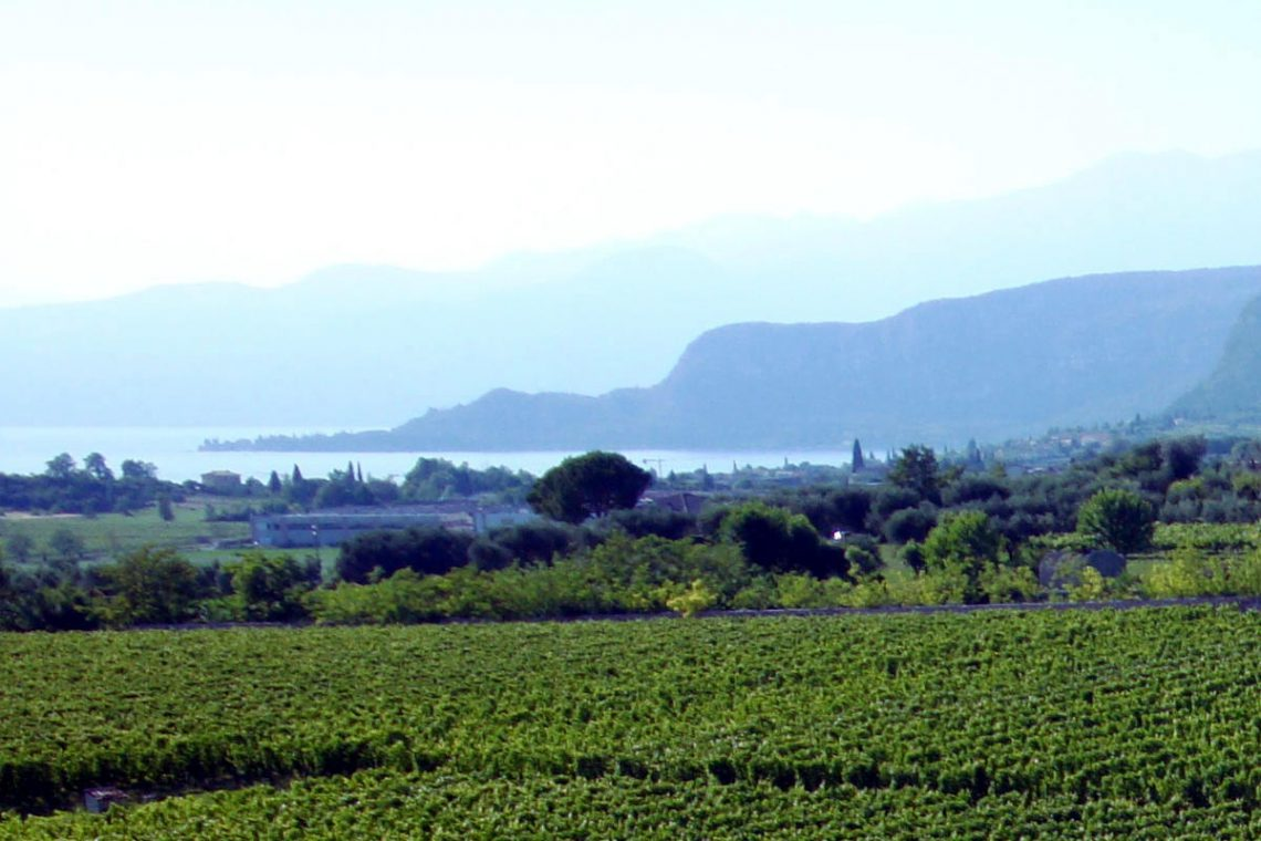 Winery Bardolino for sale with lake view 01