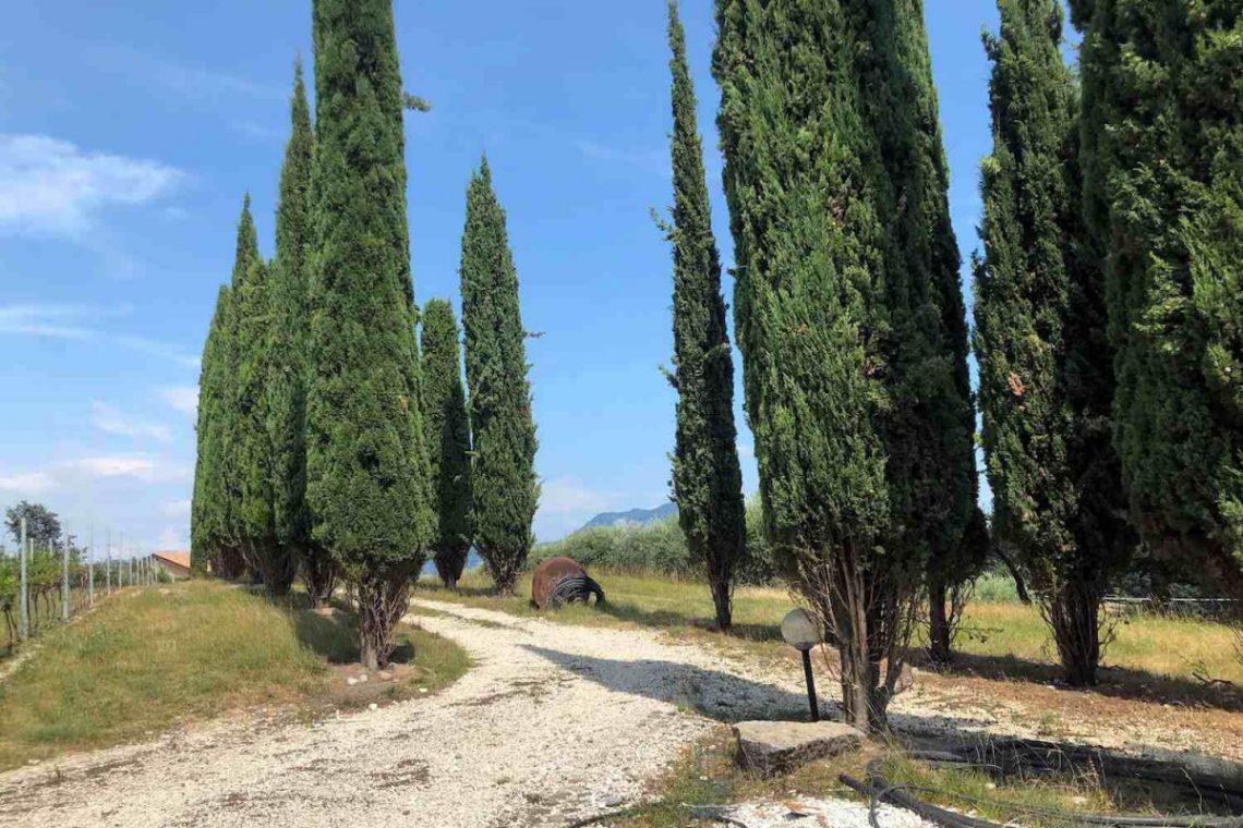 Building land Garda Lake 09