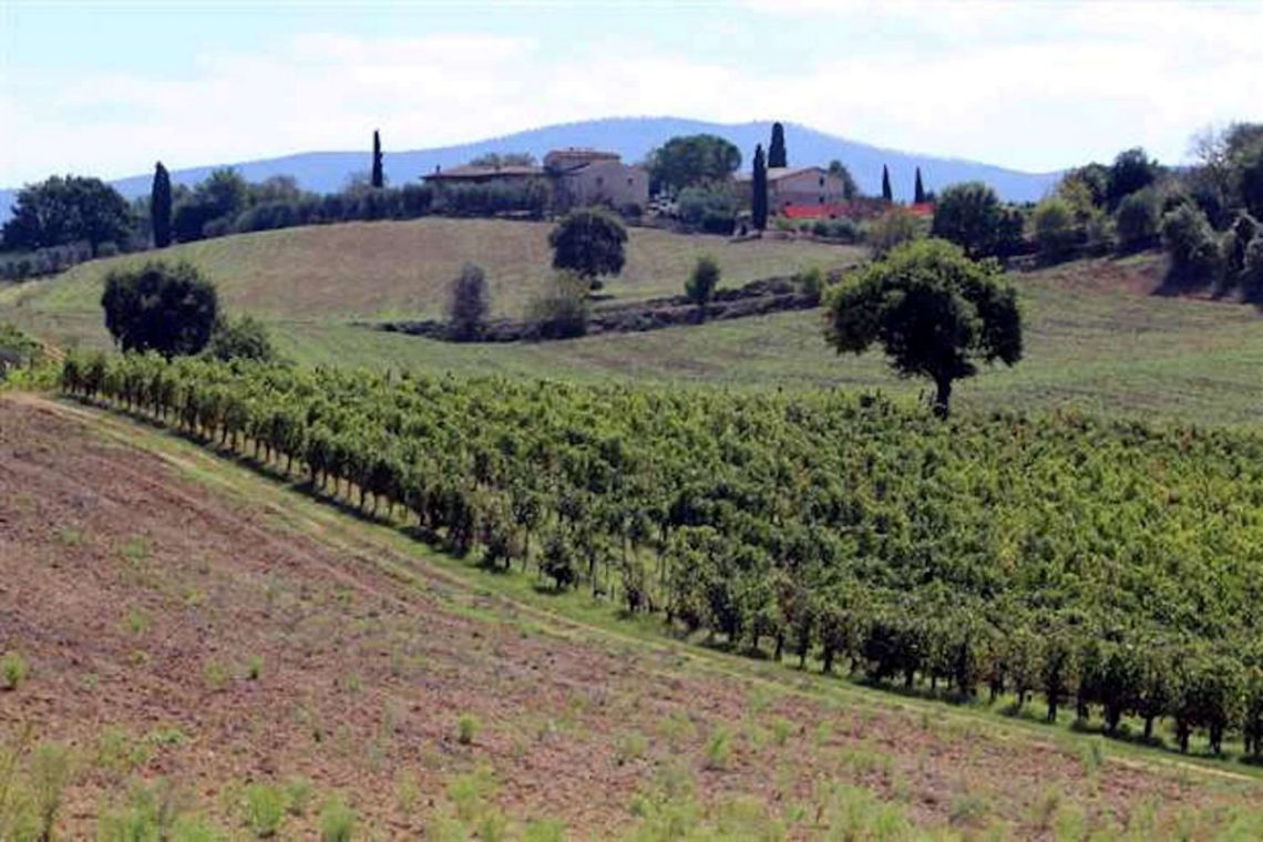 Tuscan Winery for Sale 04
