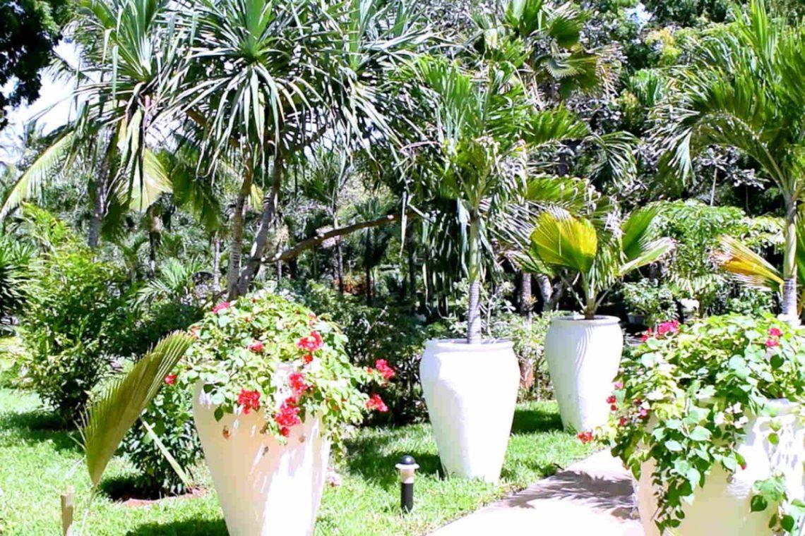 Beach villa in Kilifi Kenya 26
